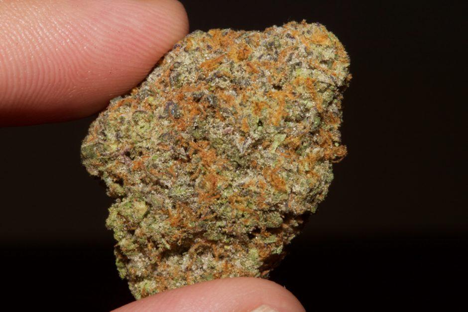 here 4 the flavor marijuana strain reviews